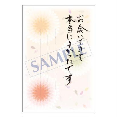 メッセージカード/出会い・感謝・お祝い・ご挨拶/08-0262/1セット(10枚)