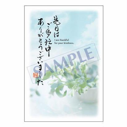メッセージカード  出会い・感謝・お祝い・ご挨   14-0642   1セット(10枚)