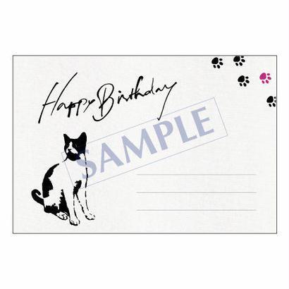メッセージカード/バースデー/14-0679/1セット(10枚)
