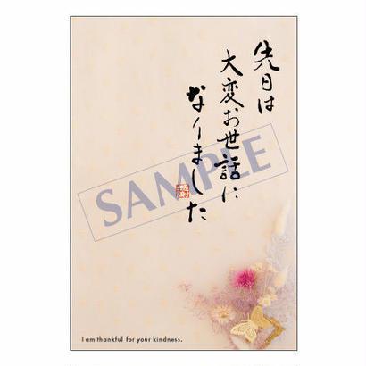 メッセージカード  出会い・感謝・お祝い・ご挨拶  14-0638   1セット(10枚)