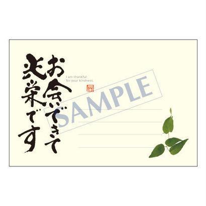 メッセージカード/出会い・感謝・お祝い・ご挨拶/11-0497/1セット(10枚)