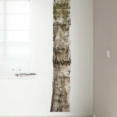 木の壁のスティッカー - KEK Amsterdam