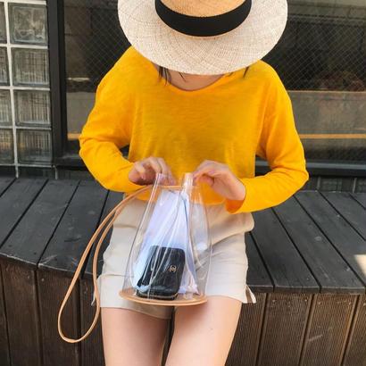 clearpurse bag