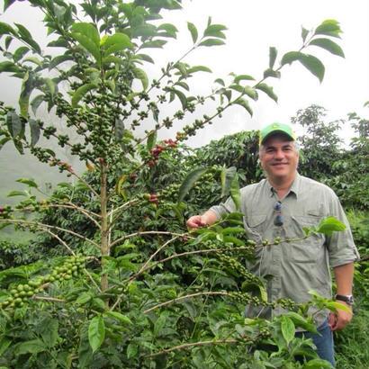 パナマ カルメン農園 ワイニー 200g