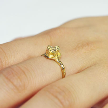 """archi ring"" gold 01/03/10"