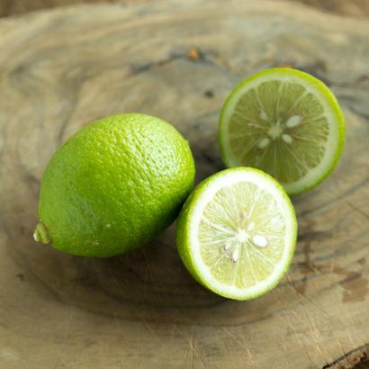 HOMEMAKERS グリーンレモン 1kg(10〜15個)