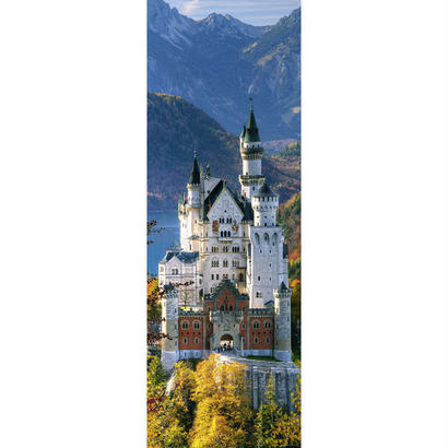 Neuschwanstein : Sights - 29735