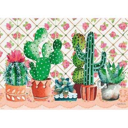 Cactus Family : Gabila Rissone Musumeci - 29831