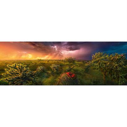 Stormy Horizon : Ed. Humboldt - 29817