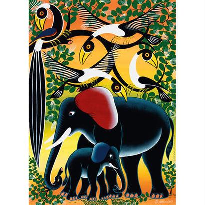 Elephant Family : Tinga Tinga - 29458