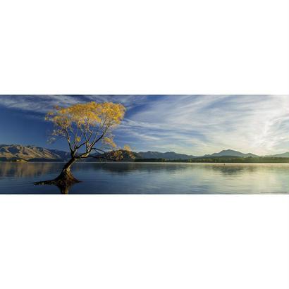 Lake Wanaka  :  Ed. Humboldt - 29673