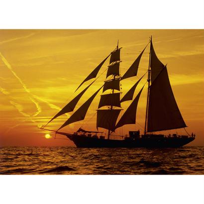 Sunny Sailing : Sunlight - 29717