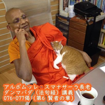 スマナサーラ長老のダンマパダ講義076-077(MP3音声)
