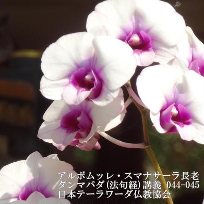 スマナサーラ長老のダンマパダ講義 044-045(MP3音声)