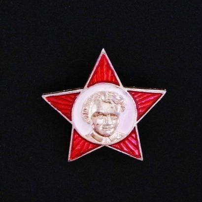 ソビエトバッジ (16)