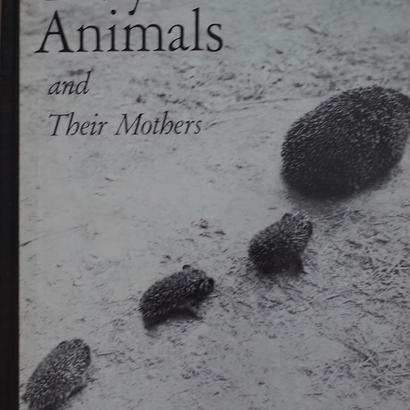 Baby Animals and Their Mothers / HANS REICH