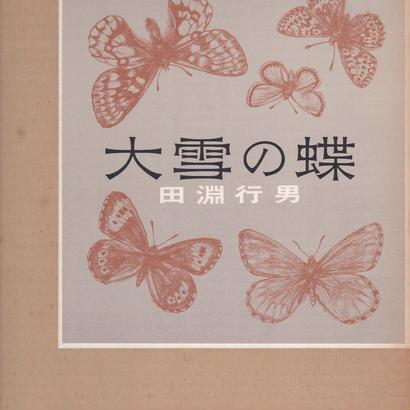 大雪の蝶 / 田淵行男