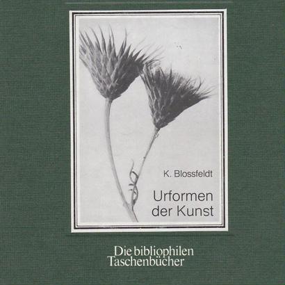 Urformen der Kunst Die bibliophilen Taschenbucher / Karl Blossfeldt
