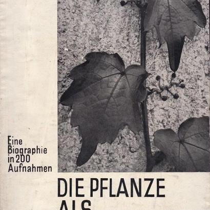 DIE PELANZE ALS LEBEWESEN /Ernst Fuhrmann