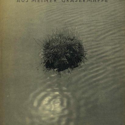 AUS MEINER GRASERMAPPE / FRITZ KUHN