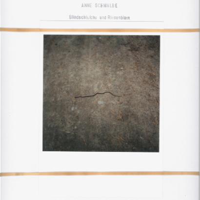 BLINDSCHLEICHE UND RIESENBLATT by Anne Schwalbe [SIGNED]