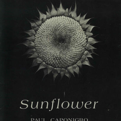 Sunflower / Paul Caponigro (SIGNED COPY)