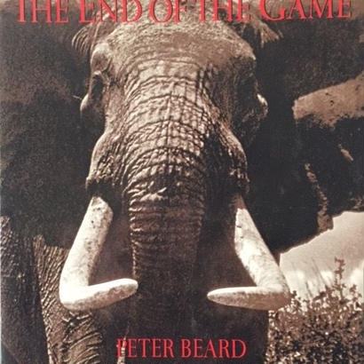 THE END OF THE GAME / Peter Beard