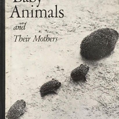 Baby Animal and Their Mothers /HANS REICH