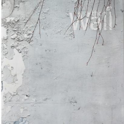 The Wall / Abbas Kiarostami