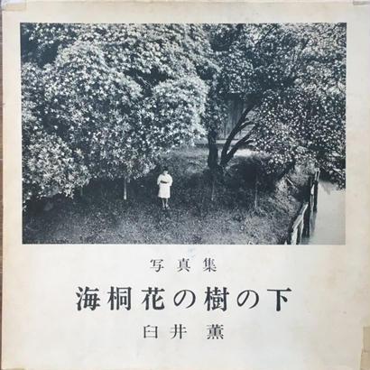 海桐花の樹の下  / 臼井薫