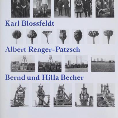 Vergleichende Konzeptionen / August Sander ・Karl Blossfeldt ・Albert Renger-Patzsch etc