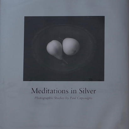 Meditations in Silver / Paul Caponigro