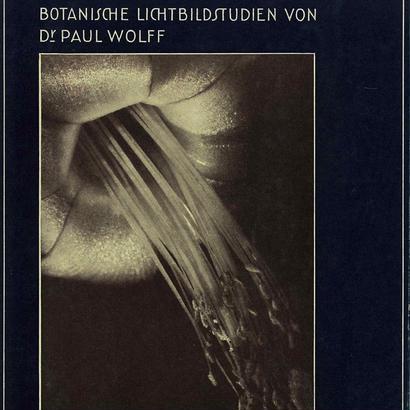 FORMEN DES LEBENS / Dr. Paul Wolff