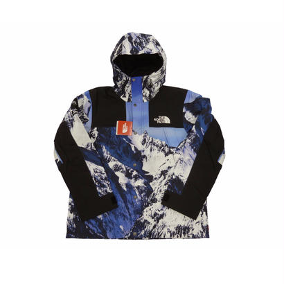 Supreme®/The North Face® Mountain Parka