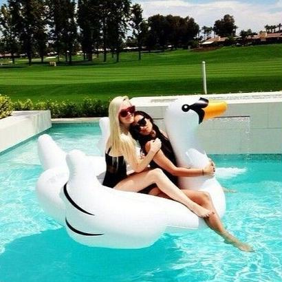 take  me to the paradise swan