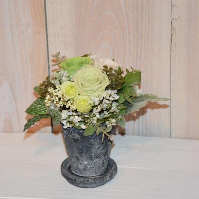 Claypot green