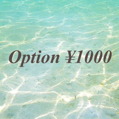 option ¥1000