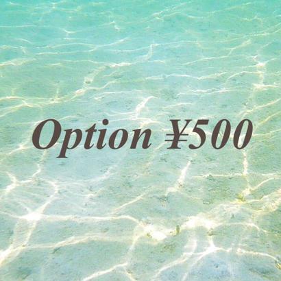option ¥500