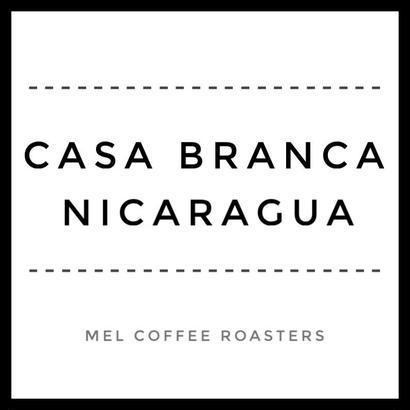 ◼︎ Nicaragua Casa Branca 100g 浅煎り