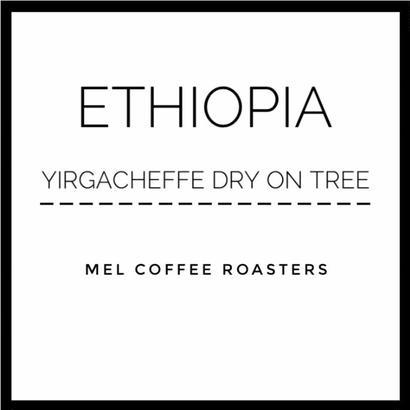 エチオピア イルガチェフェ ドライオンツリー