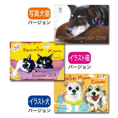 《1冊でのご注文》2019 保護犬猫【A4壁掛け】写真/イラストカレンダー