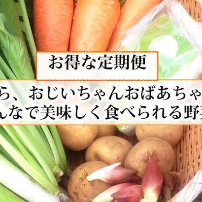 【お得な定期便】もうり農園の野菜ボックス  のコピー