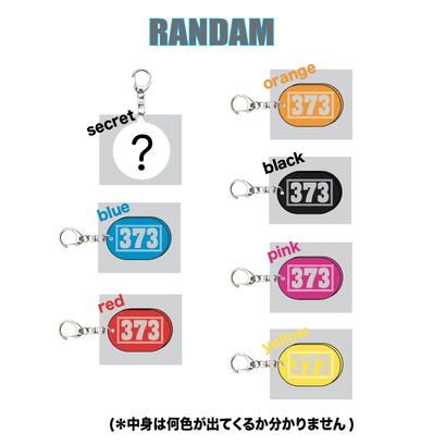 373 key ring(RANDAM)