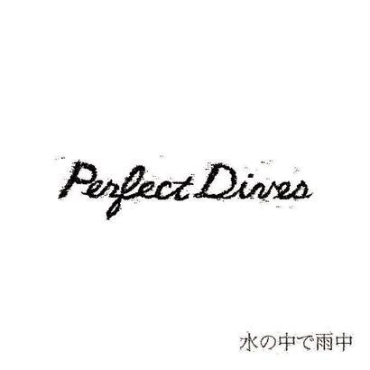 PerfectDives