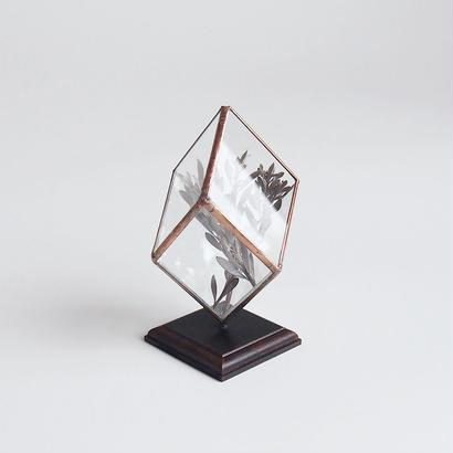 mini terrarium/rhombohedron/antique