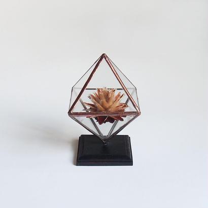 mini terrarium/regular octahedron/antique