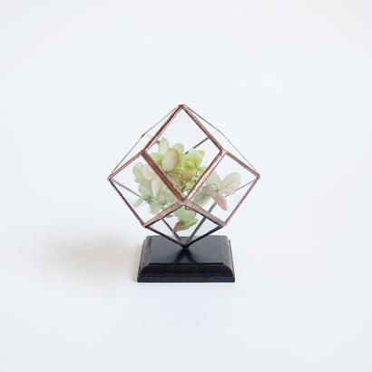 mini terrarium/rhombic dodecahedron/antique