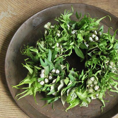 野の花屋 羊歯のグリーンリース