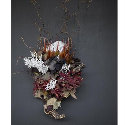 野の花屋 プロテアと流木のスワッグ