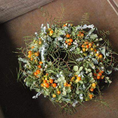 野の花屋 ツルウメモドキのオータムリース